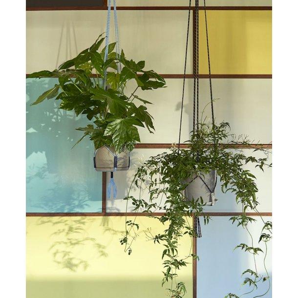 PHANTA PLANT HANGER